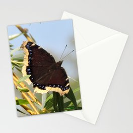 Mourning Cloak Butterfly Sunning Stationery Cards