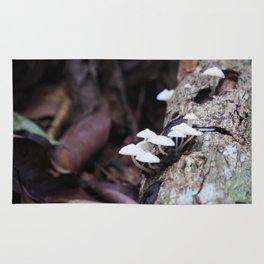 Little mushroom Rug
