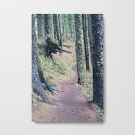 Nice Walk in the Forest Metal Print