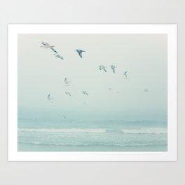 Seagulls Over the Sea Art Print