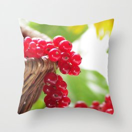 Red summer fruits image Throw Pillow