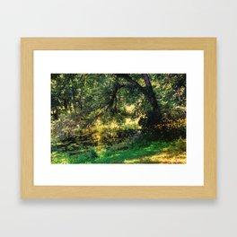 On Allerton Pond Framed Art Print