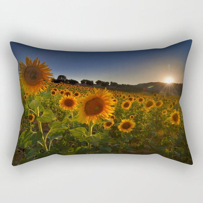 """Sunflowers following the sun"" Rectangular Pillow"