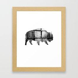 Buffalo (The Living Things Series)  Framed Art Print