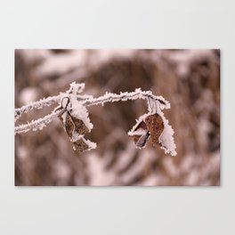 Golden Leaves Frosted Canvas Print