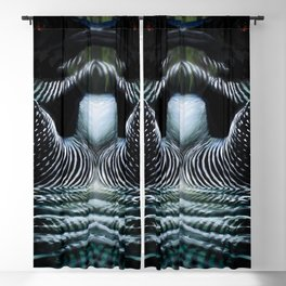 LoonReflections Blackout Curtain