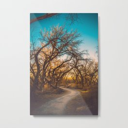 Illuminated New Mexican Trail Metal Print