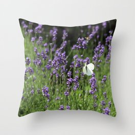 buterfly in the lavender Throw Pillow