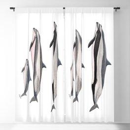 Fraser´s dolphin Blackout Curtain