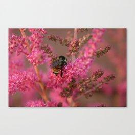 Bee Mine? Canvas Print