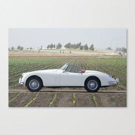 1956 Jaguar XK Canvas Print