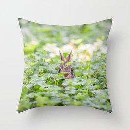 Itty Bitty Baby Bunny Throw Pillow