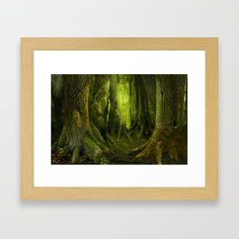 Mysterious ancient forest Framed Art Print