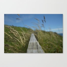 Wind and Grasses Canvas Print