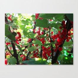 Super Fruit - We be jamming! Canvas Print