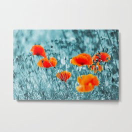 Red Poppy/ Roter Mohn Metal Print