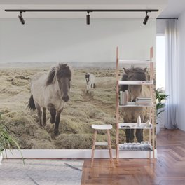 Horse Photograph in Color Wall Mural
