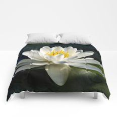 Waterlily Comforters