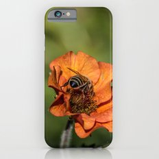 Bee Butt Slim Case iPhone 6s