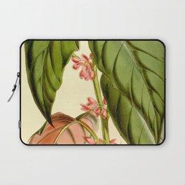 Begonia mannii Laptop Sleeve
