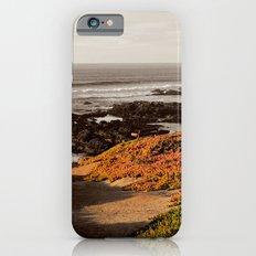 Embers iPhone 6s Slim Case