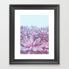 Sweet Succulents Framed Art Print