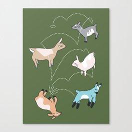 Parkour Goat Canvas Print