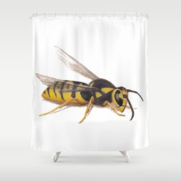 Wasp by Lars Furtwaengler | Colored Pencil / Pastel Pencil | 2011 Shower Curtain