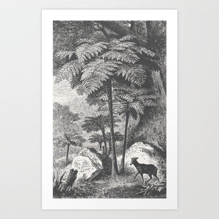 Deer and Fern Kunstdrucke
