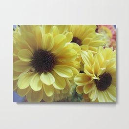 Yellow Daisy Mums Metal Print