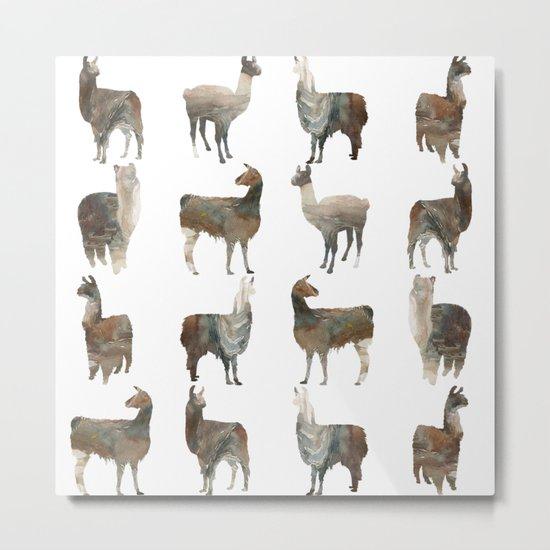 Llamas Team Metal Print