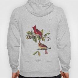 Cardinal grosbeak, Birds of America, Audubon Plate 159 Hoody