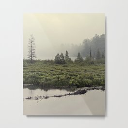 trees in the morning mist Metal Print
