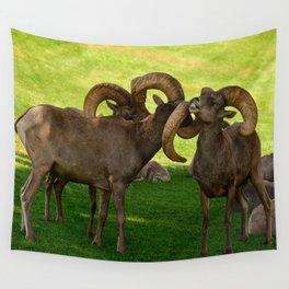 Entangled Horns - Desert Bighorn Rams Wall Tapestry