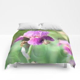Iris Eyes Comforters