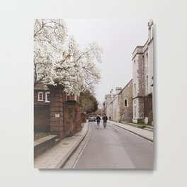 Blossom Walk in Winchester, England Metal Print