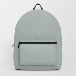 Minimalist pale dusty greenish gray color decor  Backpack