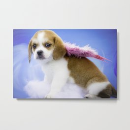Miracle the Angel Metal Print