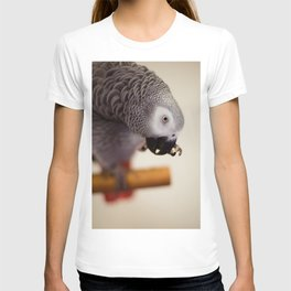 My Nose is Itchy T-shirt
