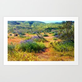 Blooms in the Desert by Reay of Light Art Print