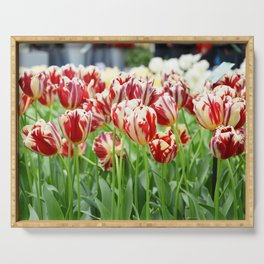 Striped tulips Serving Tray