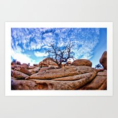 Joshua Tree National Park Art Print