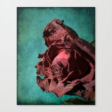 Forever Lovely Canvas Print