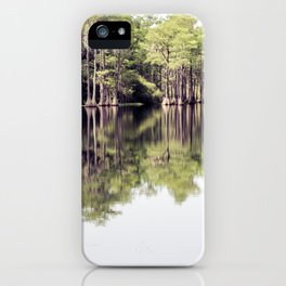 Florida Beauty 7 iPhone Case