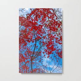 My Red Heaven Metal Print