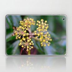 Wild Ivy Laptop & iPad Skin