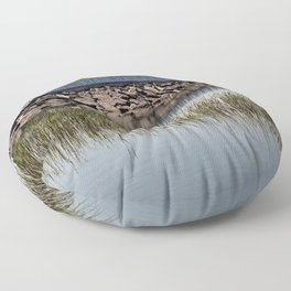 Reed Bed and Blue Floor Pillow