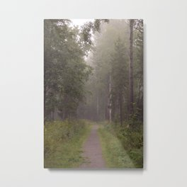 Foggy path Metal Print