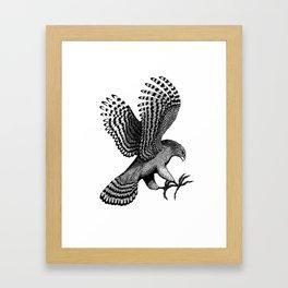 Hawks Landing Framed Art Print