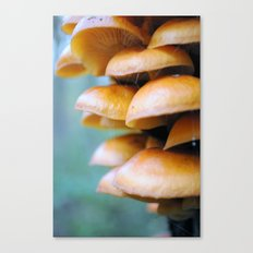 Tree Growth Canvas Print